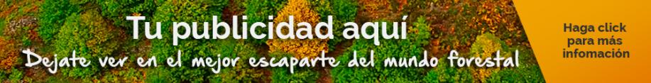 banner-alargado-promoción