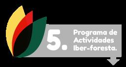 descargas-programa-de-actividades